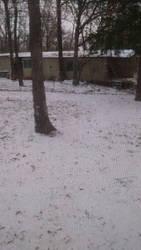 Snow Day by LeopardStrike2