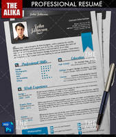 Professional Resume by TheAlikA