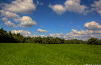 Grass and Clouds by Creadion