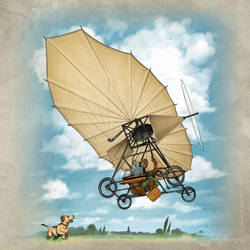 The Flying Machine of Vuia by Viviengros