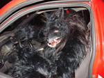 werewolf driver by missmonster