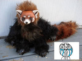 Fizzroy Red Panda doll by missmonster