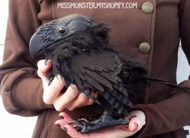 Orion the Raven by missmonster