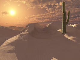 Desert Sunset by VirginPrune