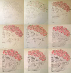 Skull by LineBorowski