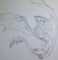 Dragon Sketch by Shadow-Dragon27