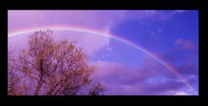 Rainbow by Toja7777777
