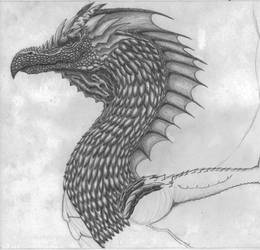 Dragon Wip by MarcosChiaramonte