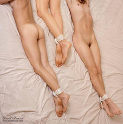 double bed plus one by DavidSamson