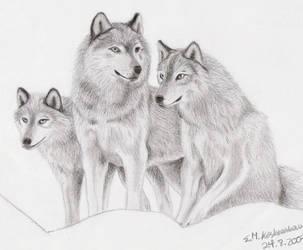 Wolves by Elkenar