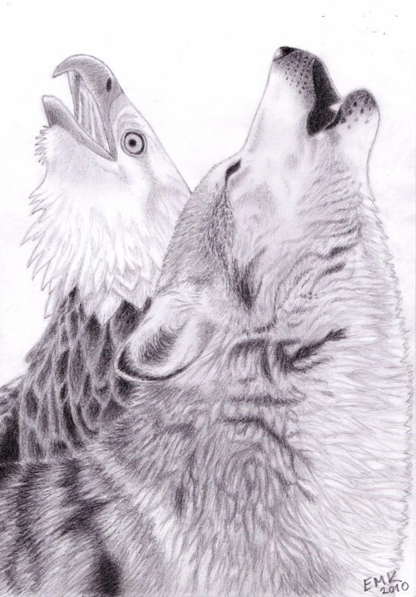 The Cry of the Wolf and Eagle by Elkenar