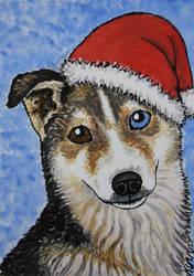Husky card 2011 by Elkenar