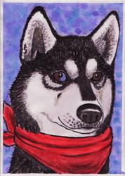 Husky card 2012 by Elkenar