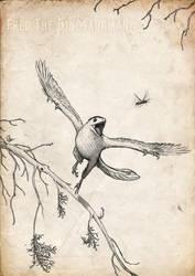 Archaeopteryx Commission by FredtheDinosaurman