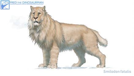 Smilodon fatalis #4.5 by FredtheDinosaurman
