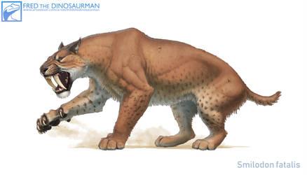Smilodon fatalis #2 by FredtheDinosaurman
