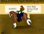 BMa Draft Show- Western Riding by Shayla-Estate