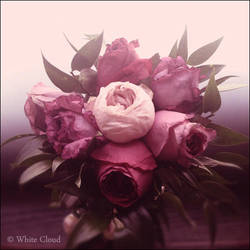 Au nom de la rose by Magical-Dust