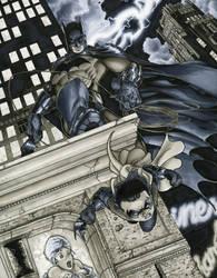 Batman and Robin by RichardCox
