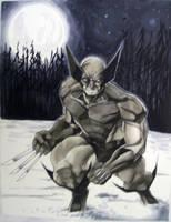 Wolverine Con Sketch HC 2010 by RichardCox