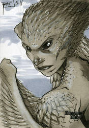 Harpy Dungeon Dolls Sketch Card by RichardCox