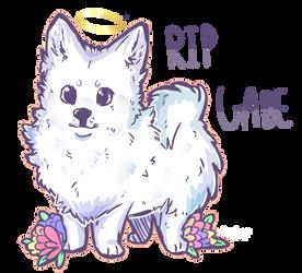 Rip Gabe by A-Cute-Username