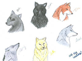 Wolves :D by LiannexSupernatural