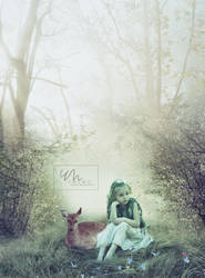 Photomanipulation by ymemo14