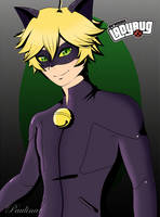 Miraculous Chat Noir by carolina123hey