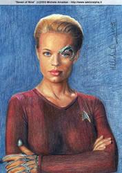 Star Trek: Seven of Nine by shintetsuya