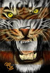 Tiger by DenGalindo