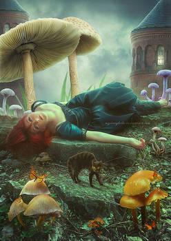 Wonderland by ChieuMua