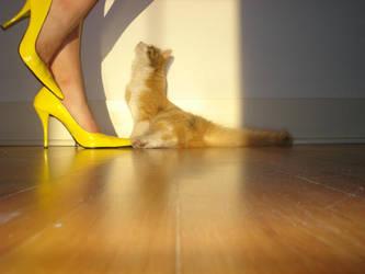 Kitten Heels by hawiian-secretary