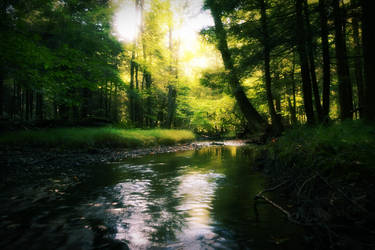 Just another creek shot by cecil92