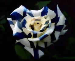 Finnish heart rose by Ketutar