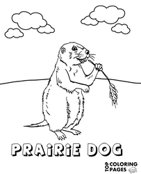 Prairie dog animal coloring page by Topcoloringpages