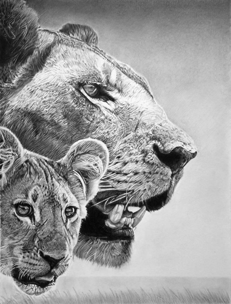 Simba and Sarabi by francoclun