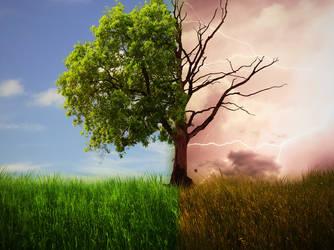 Drama Tree by fantmayo
