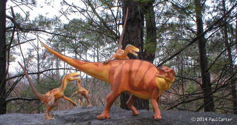 Raptor attack by Carnosaur