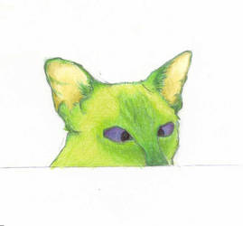green siamese face by katybobs