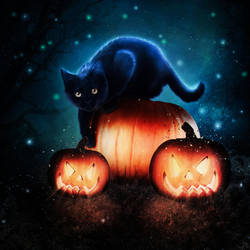 Haunted Cat by CaptainSquirel