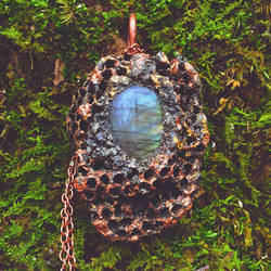 Real Wasp Nest and Labradorite Necklace by merrypranxter