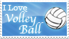 I Love Volleyball Stamp by MadMeeperPhotos