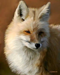 The Fox by xi5