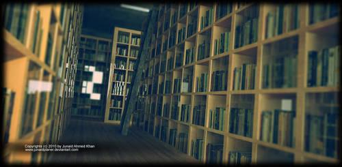 Library 2010 by junaidplaner