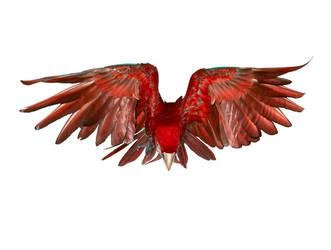 Birds3 by kenglye