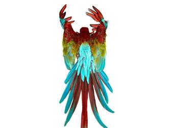 Birds8 by kenglye