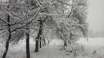Snowy landscape #2 by Annabella016
