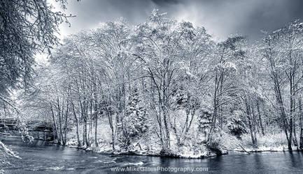Ketchikan Creek BW Winter by Muskeg