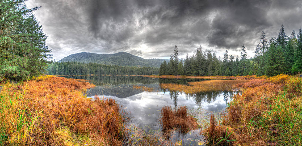 Ward Lake Fall Panorama by Muskeg